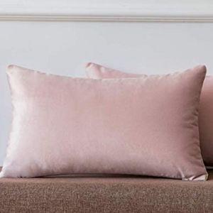 2 for $35 - Blush Pink Velvet Lumbar Pillow